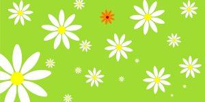 Einladungskarte, Bettina Meyer macht Schmuck: Frische Blumen, 2004